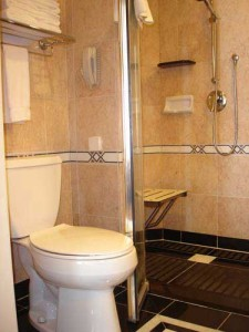 Services for accessible tourism - Accessible Toilette & Shower